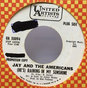 JAY AND THE AMERICANS/RAINING IN MY SUNSHINE シングルレコード